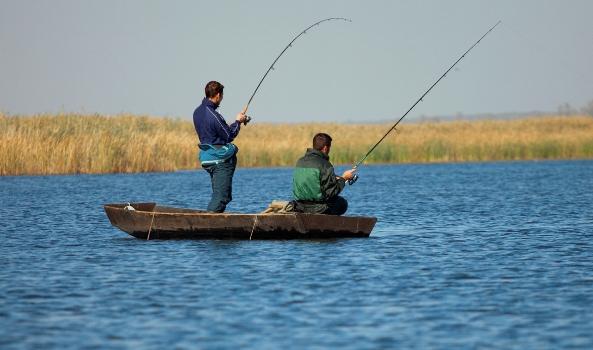 Мужчины рыбачат